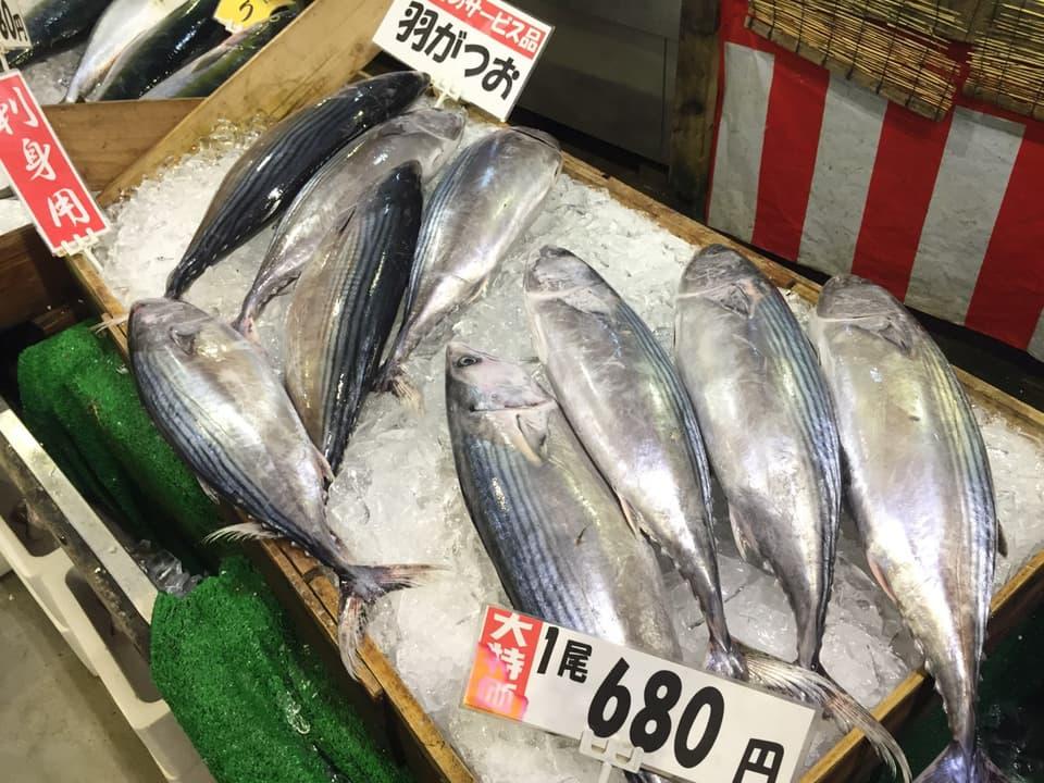 博多街道魚市カツオ