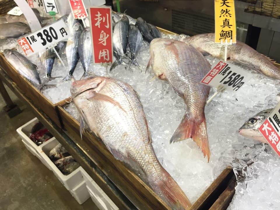 博多街道魚市天然真鯛