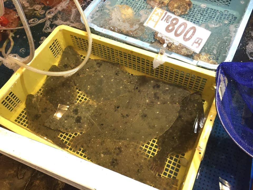 博多街道魚市かれい