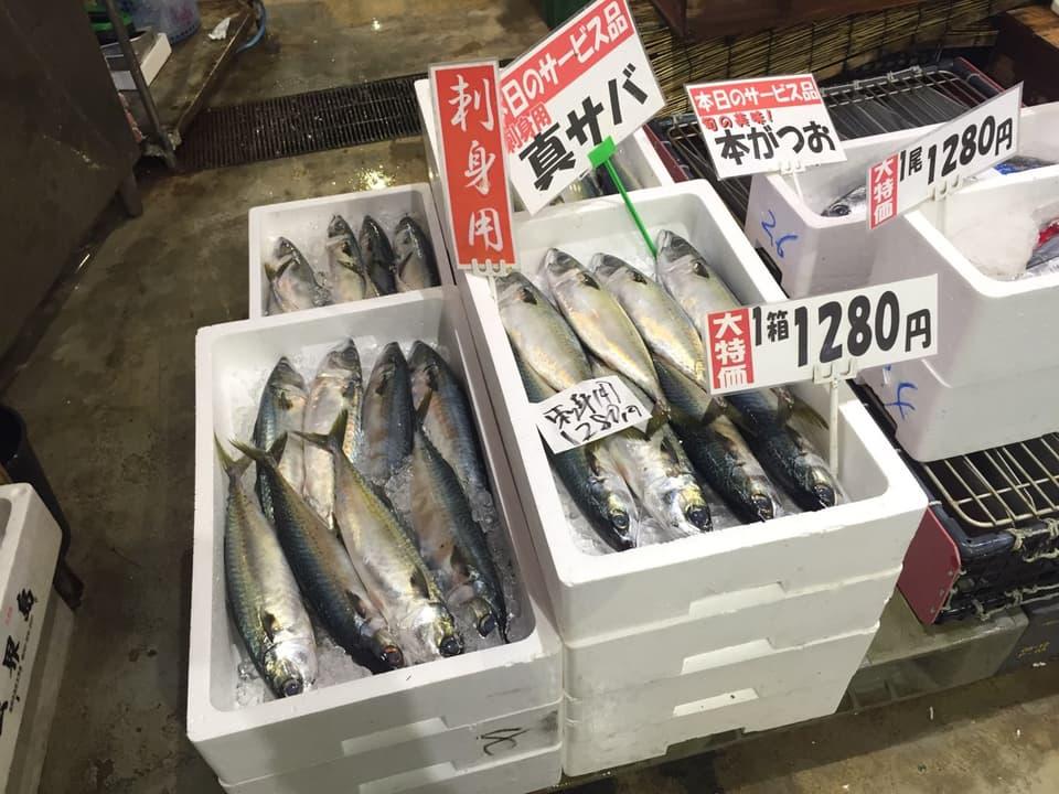 博多街道魚市真鯖